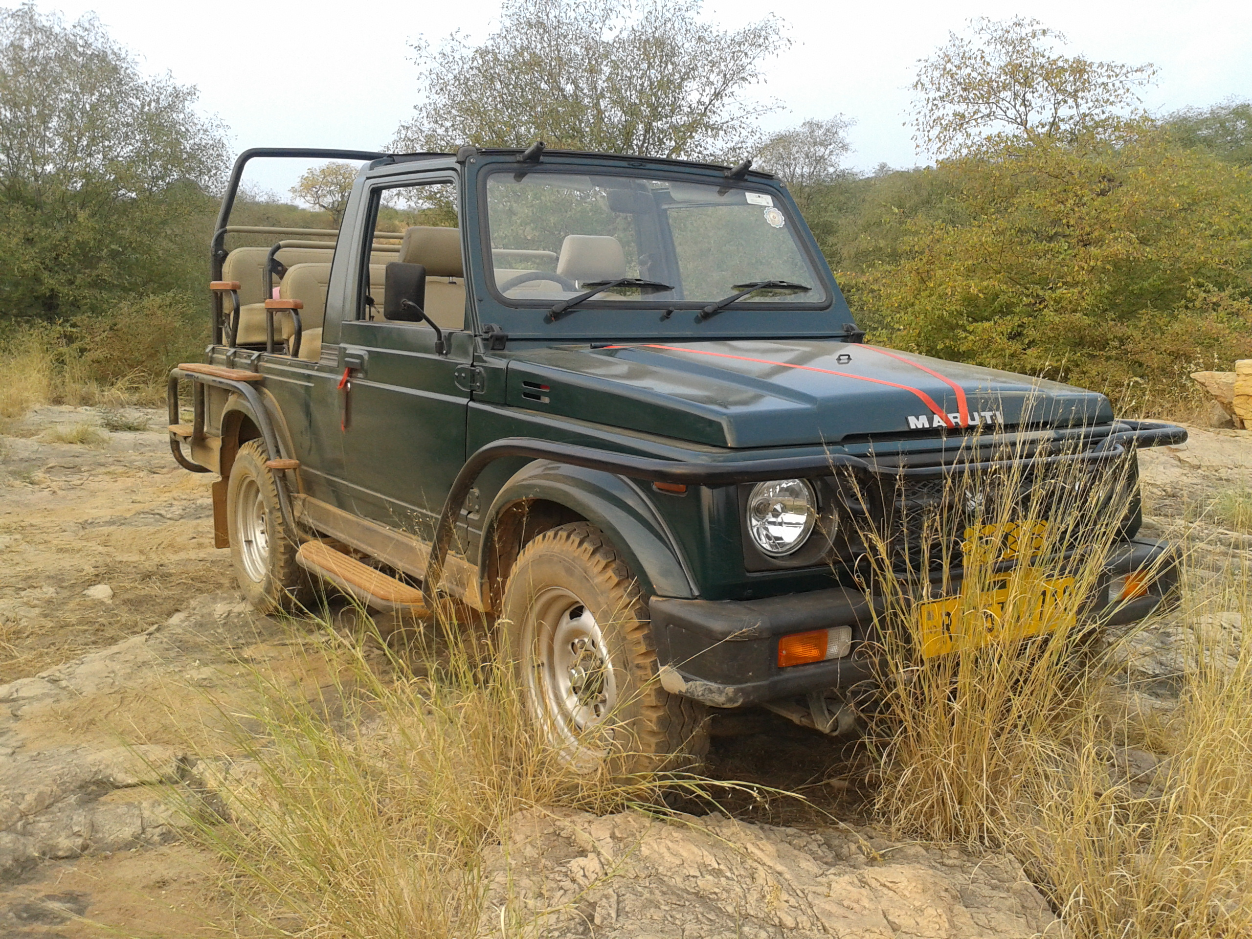 Ranthambore Jeep Safari