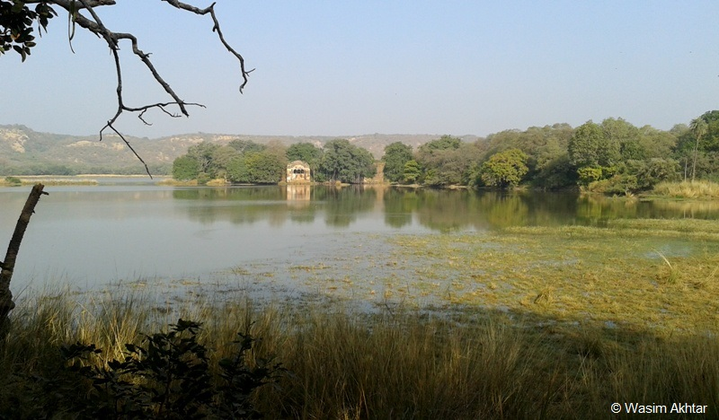 Raj Bagh Lake Ranthambore National Park
