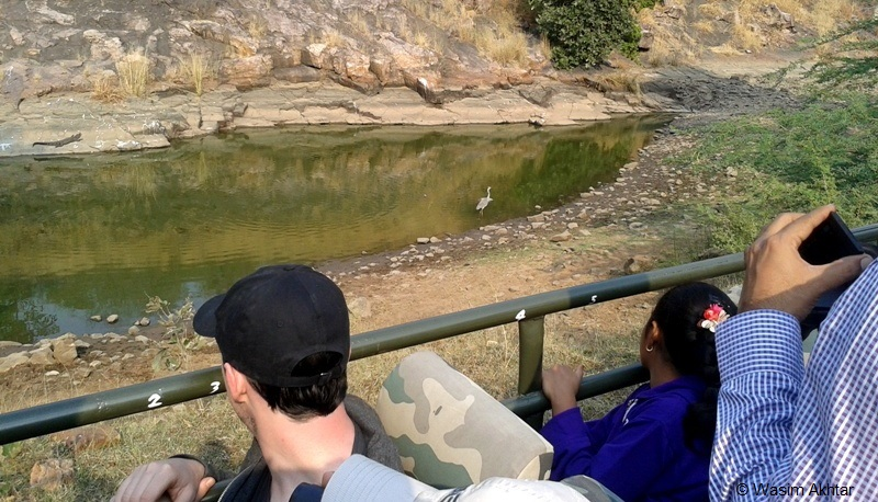 Ranthambore National Park Visit by Canter