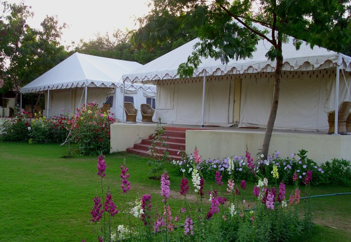 hotels in ranthambore
