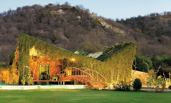 ranthambore forest resort forest resort in ranthambore. Black Bedroom Furniture Sets. Home Design Ideas