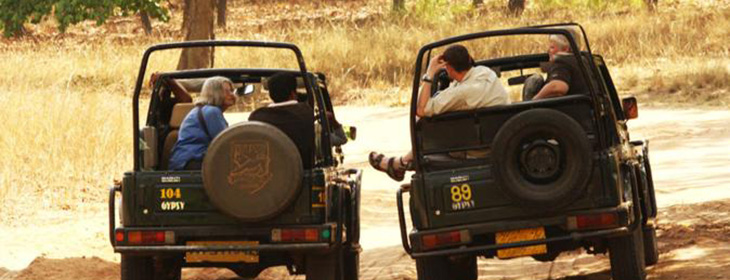 Ranthambore Tour Packages 8 Nights 9 Days