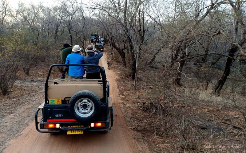 Ranthambore-Safari-Zone