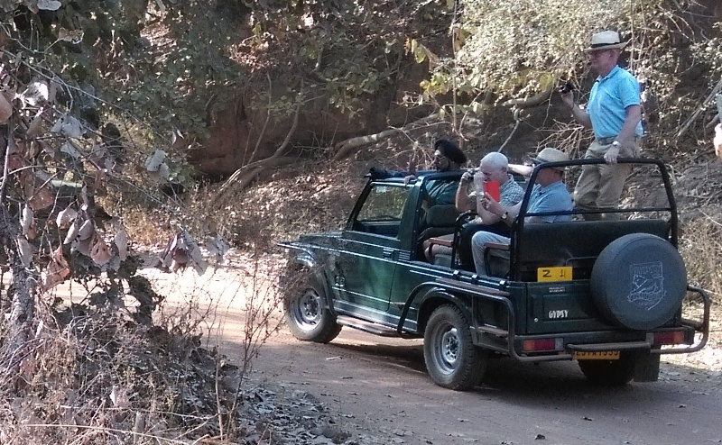 online jeep safari booking